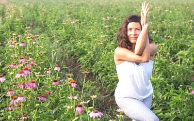 139 | Yoga and Politics | Feat. Amy Ippoliti