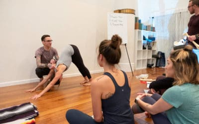 "Nerd Alert: Asana, Alignment, & Anatomy ""From Knees to Toes"""
